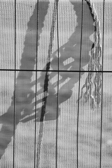 rope shadow on net