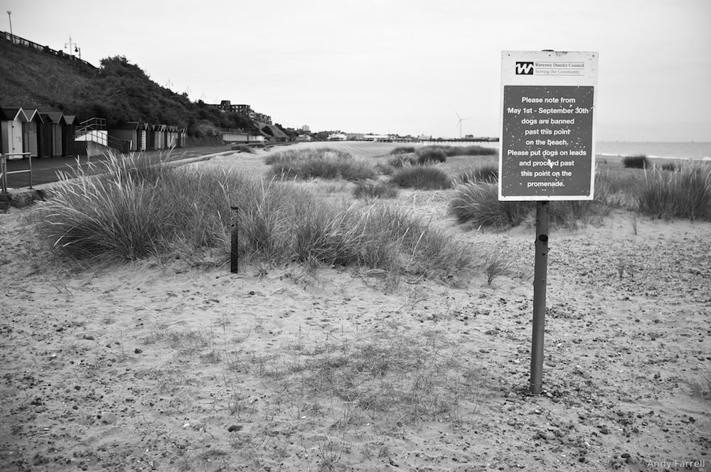 sign alerting visitors to Pakefield beach about the rules concerning dogs
