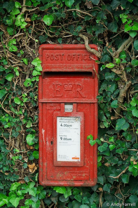 overgrown postbox