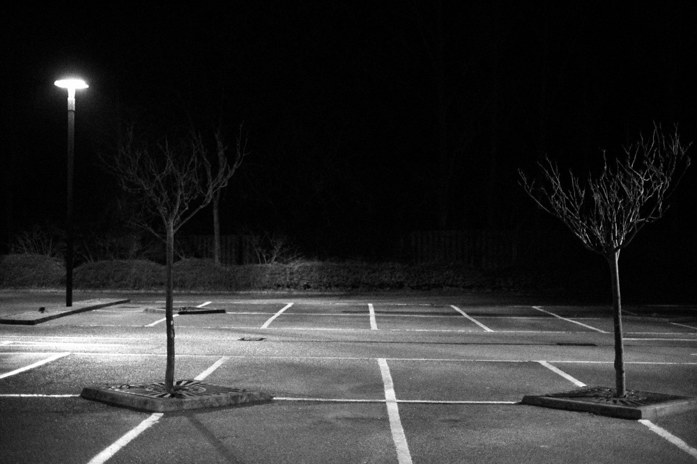 carpark trees at night