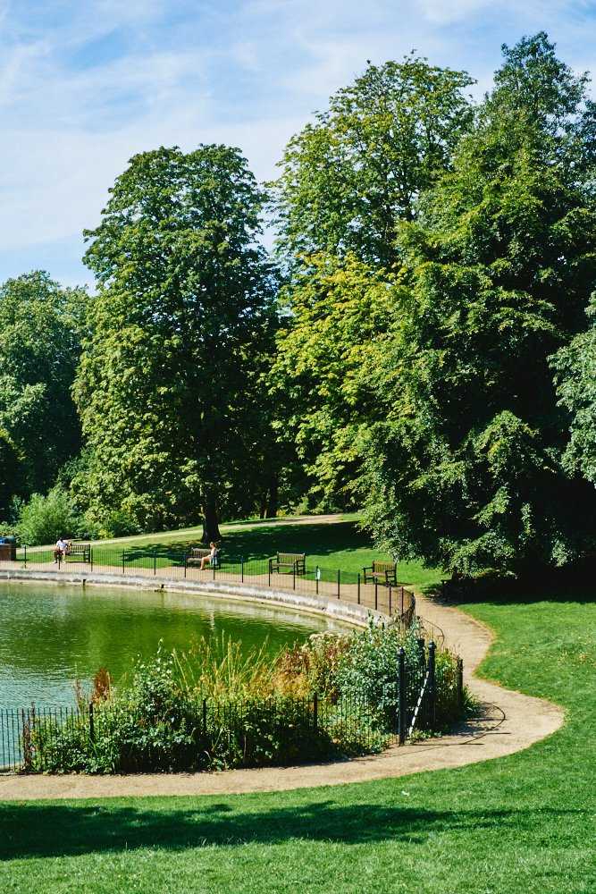 pond in Christchurch Park