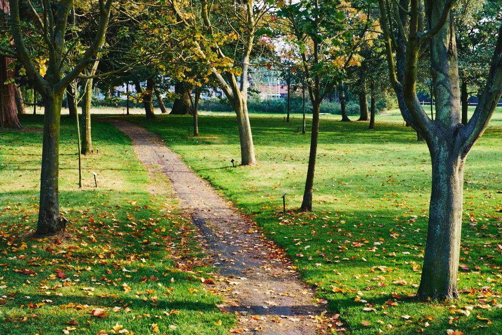 path through Nicholas Everitt Park