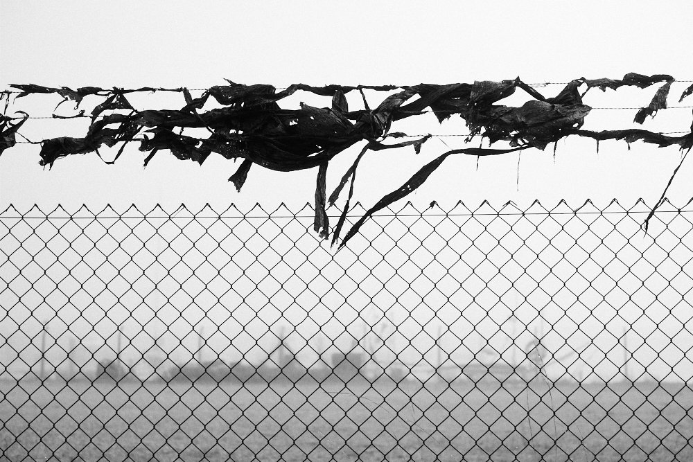 tatters on barbed wire