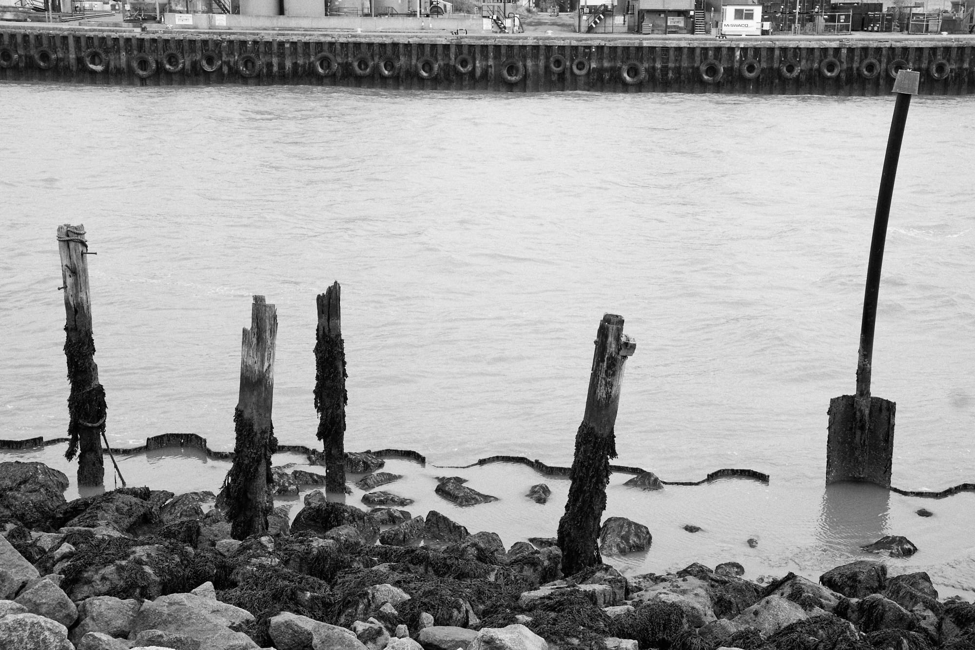 posts at the side of the River Yare