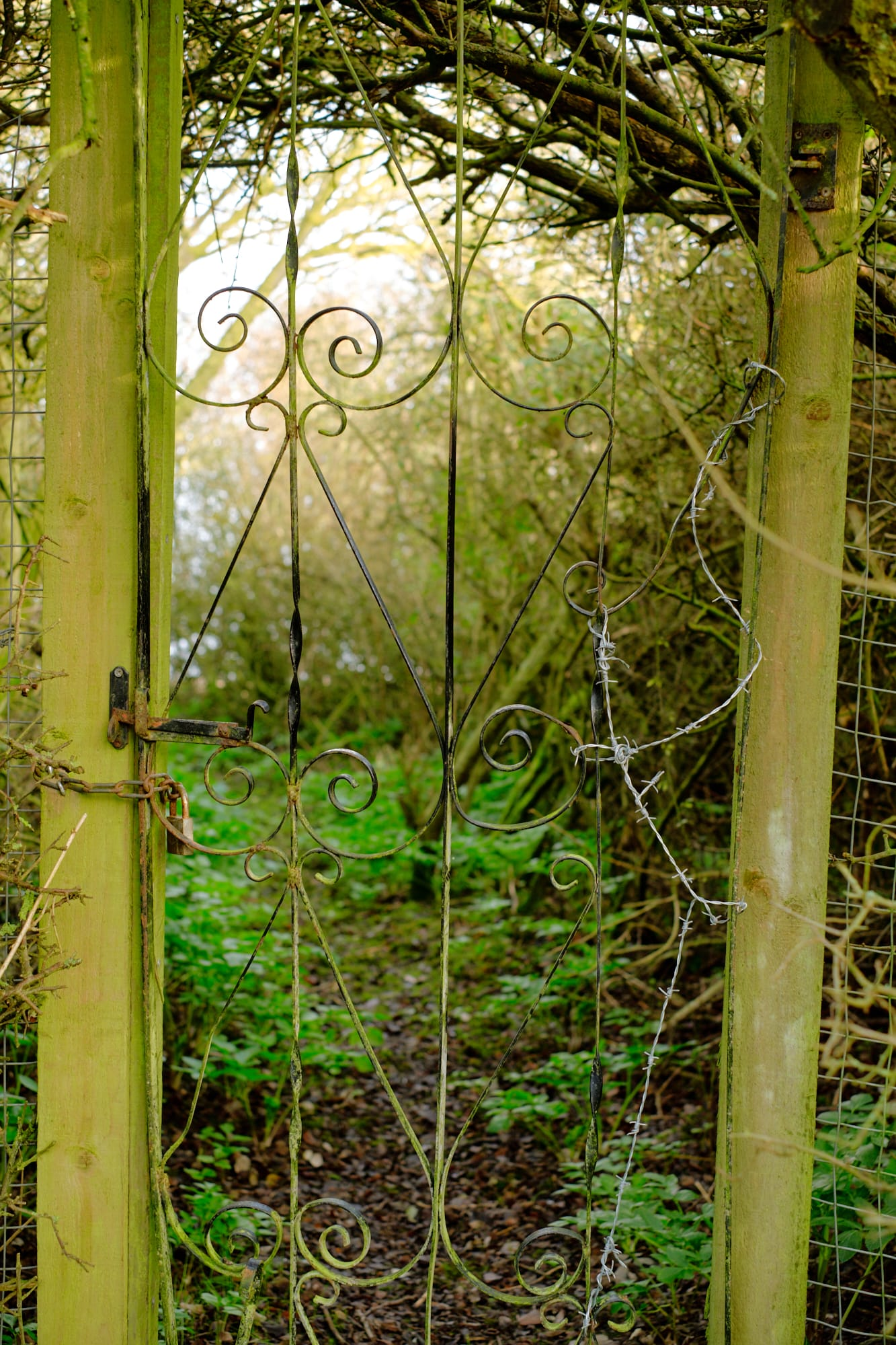 locked gate on wooded path