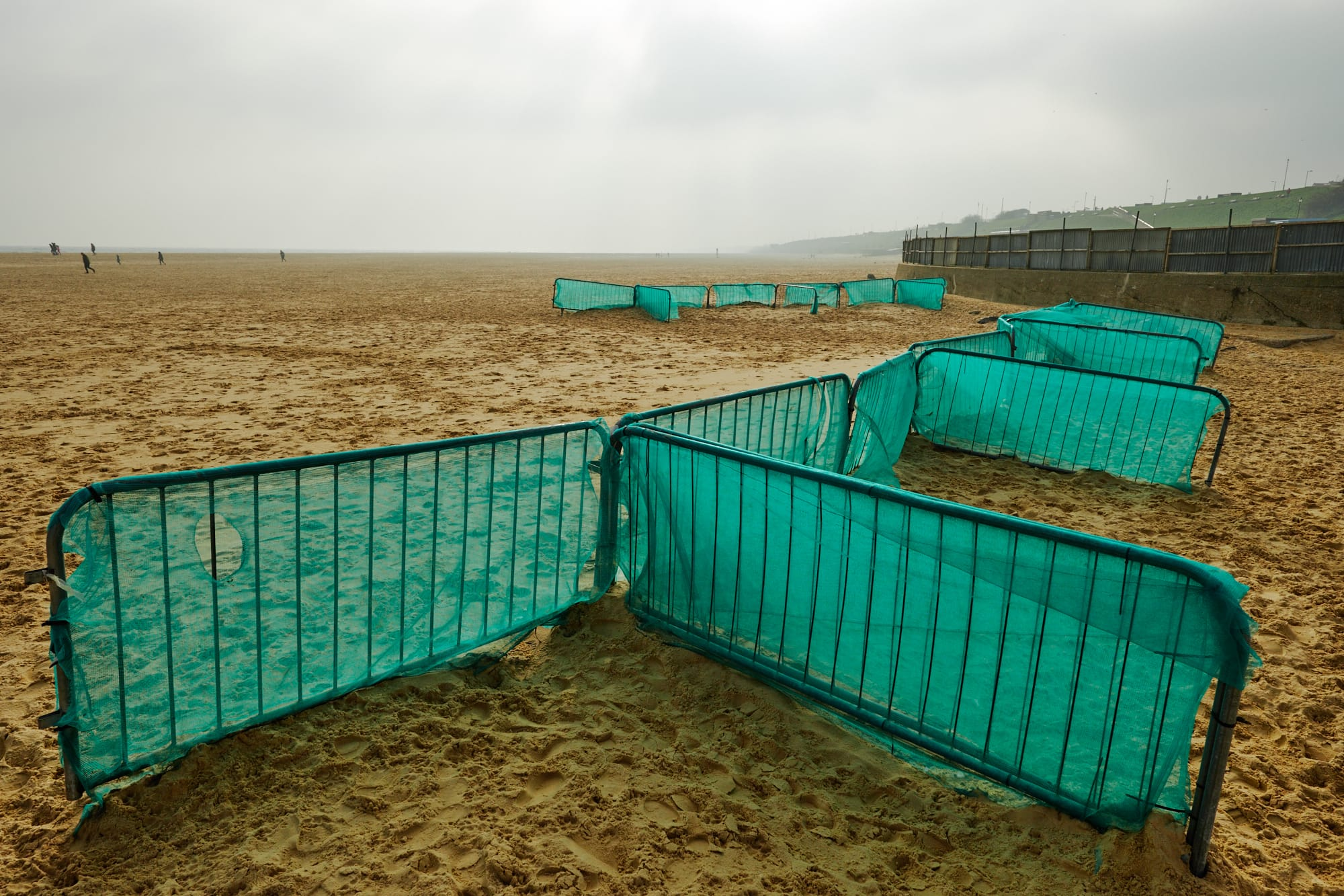 green windbreaks on the beach