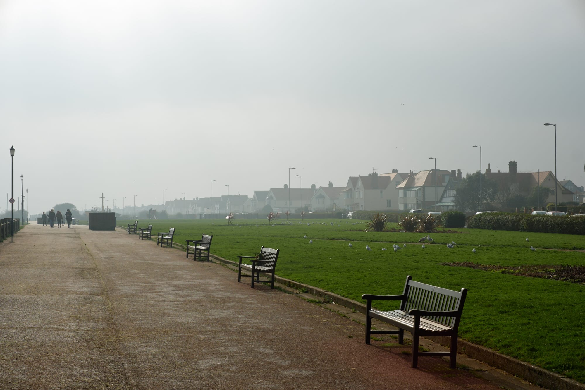 row of benches along the promenade