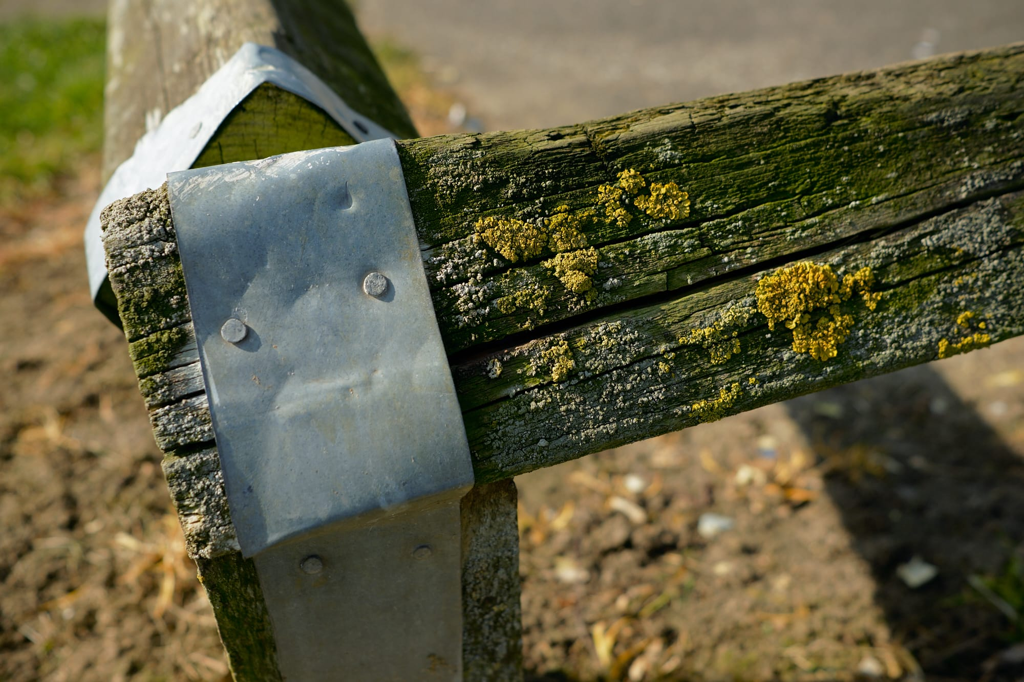 close view of short fence corner encrusted with lichen