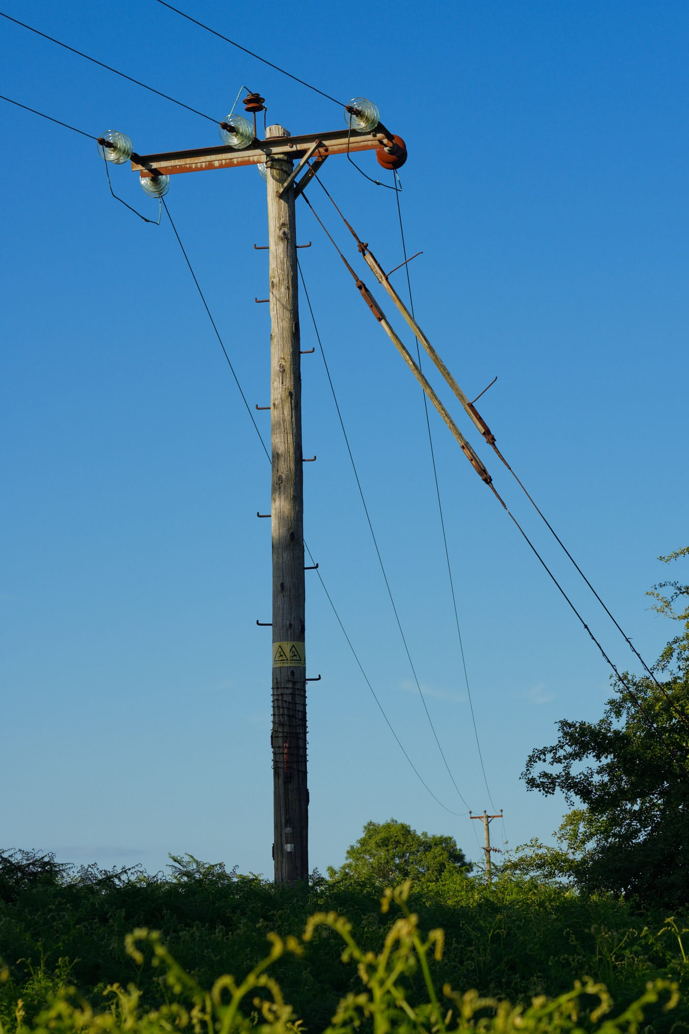 telegraph pole and wires