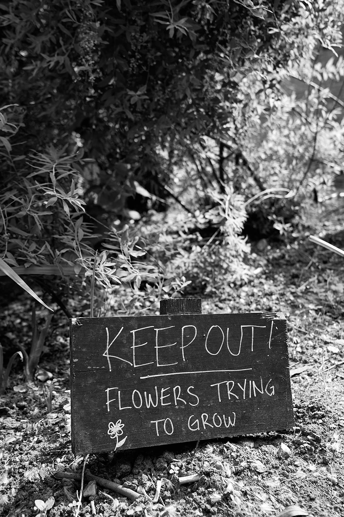flowerbed Keep Out sign