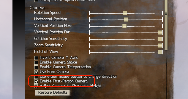 Guild Wars 2 camera options