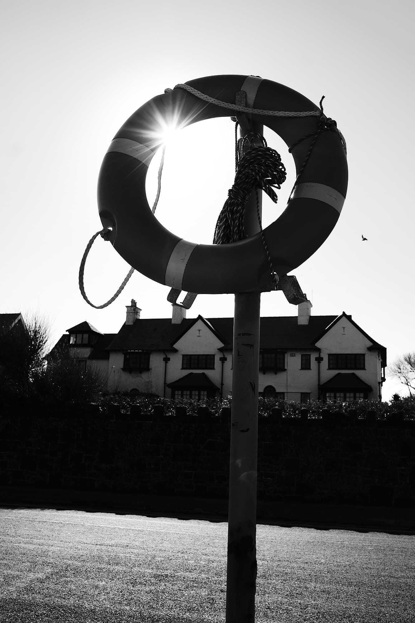 life buoy in front of the sun